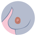 BC Icon_Shape